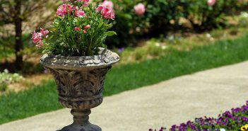Container Pot Gardening Idea