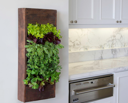 Green Spaces Inside The Kitchen