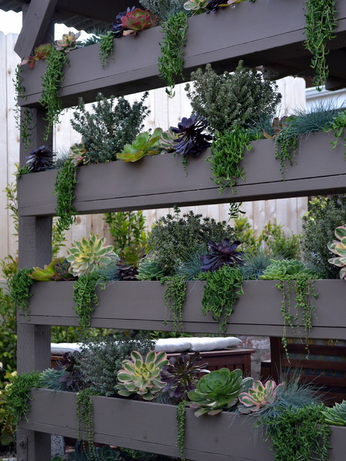 Planters and Perennials