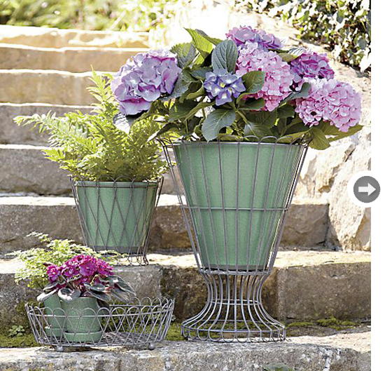 Suitable Containers For Your Garden
