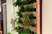 Vertical Indoor Gardening Idea
