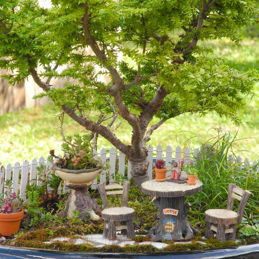 Gorgeous Fairy Garden Ideas