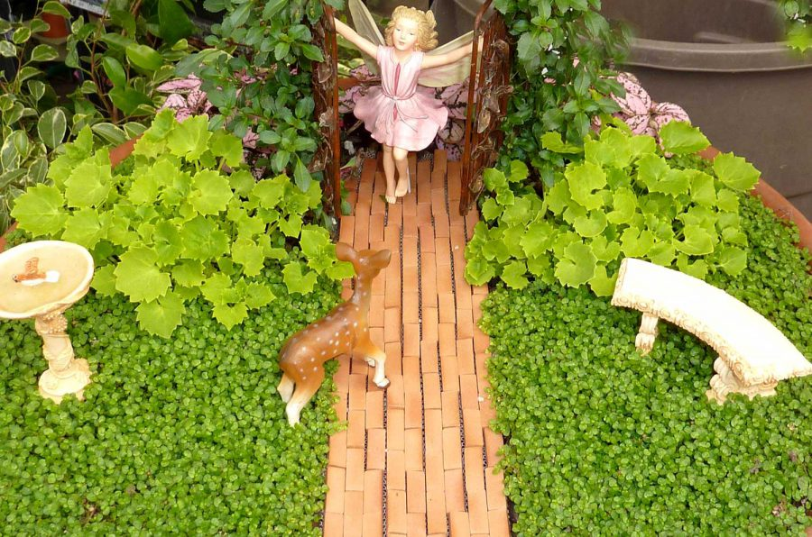 Magical Fairy Garden Design