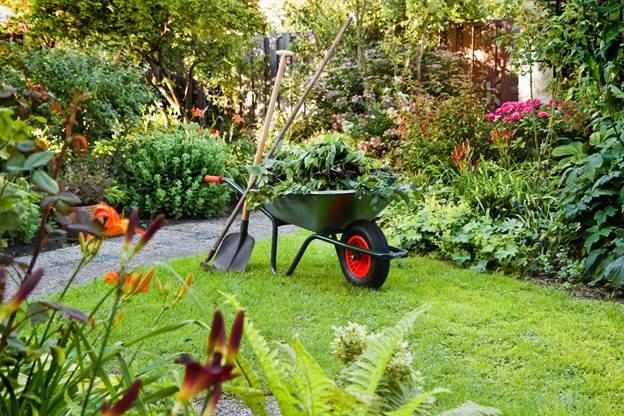 Beautiful Garden Maintenance