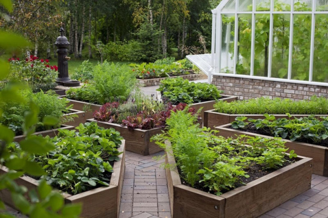 DIY Contemporary Cottage Garden