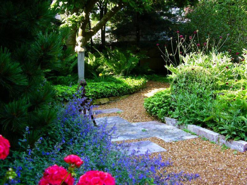 Gravel Pathway Garden Idea