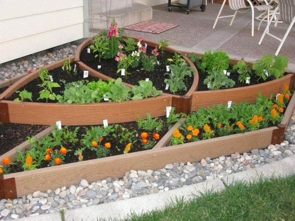 Modern Small Garden Layout Design