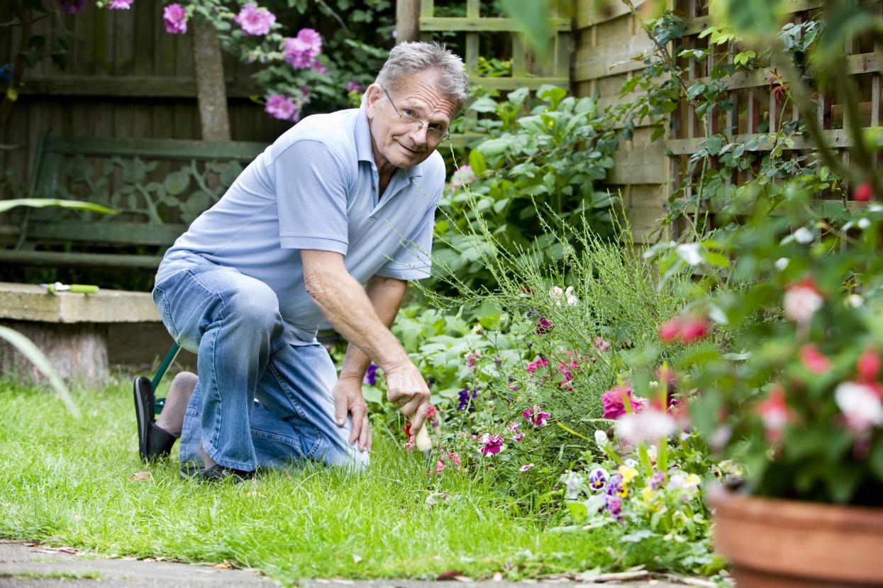 Simple Garden Maintenance