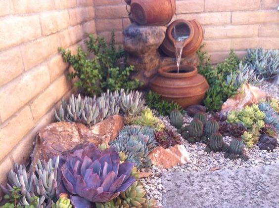 terra-cotta-gardening