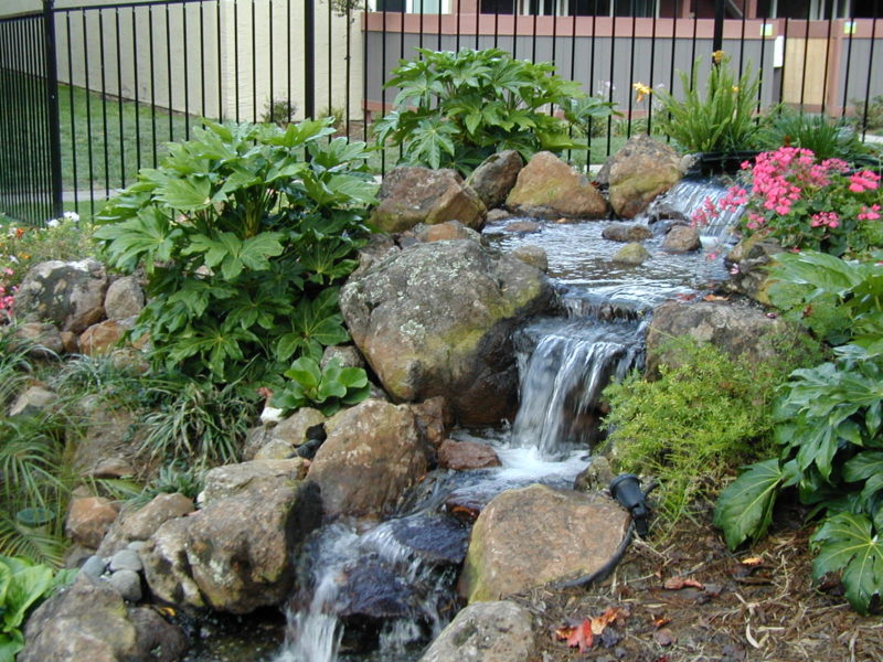 Water Bodies Gardening Zone