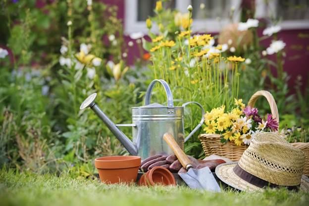 Watering For Garden