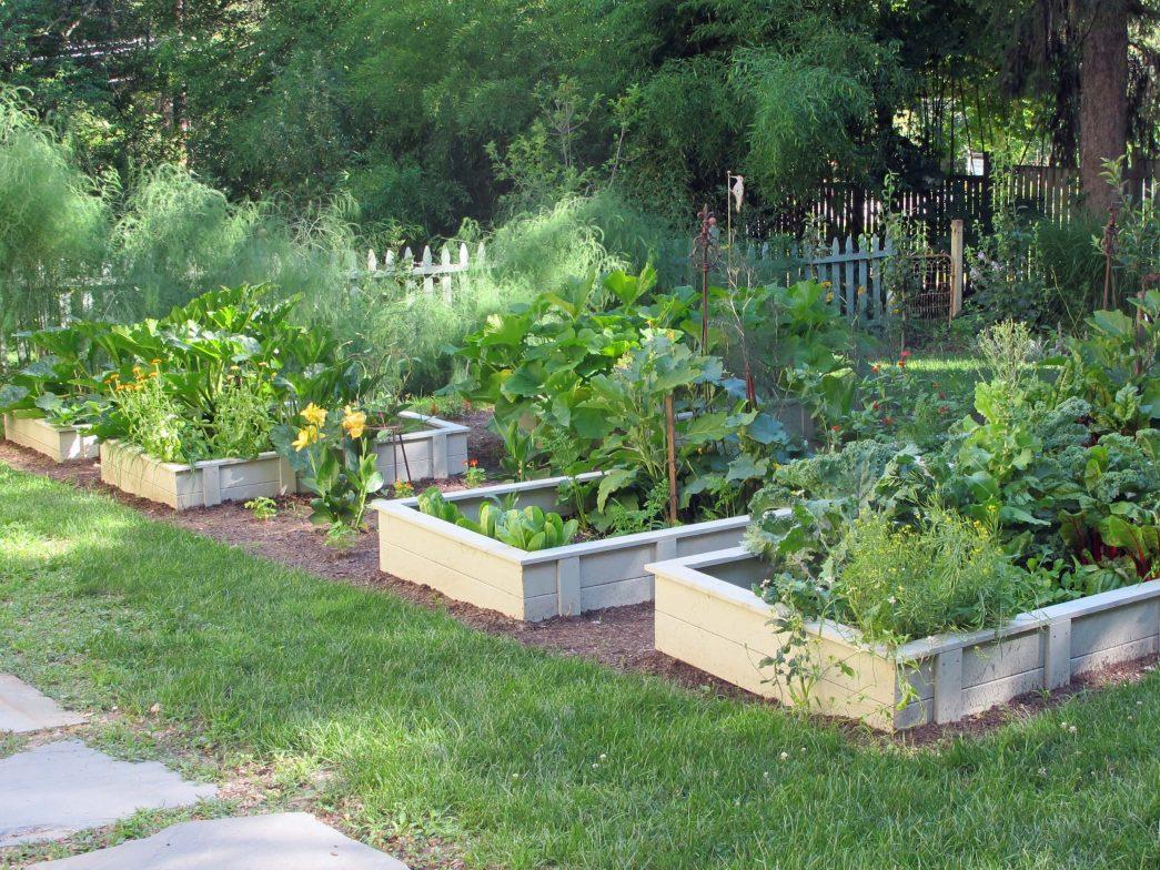 planter boxes garden ideas