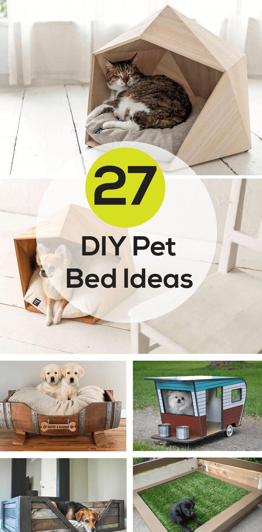 DIY Best Pet Bed Ideas