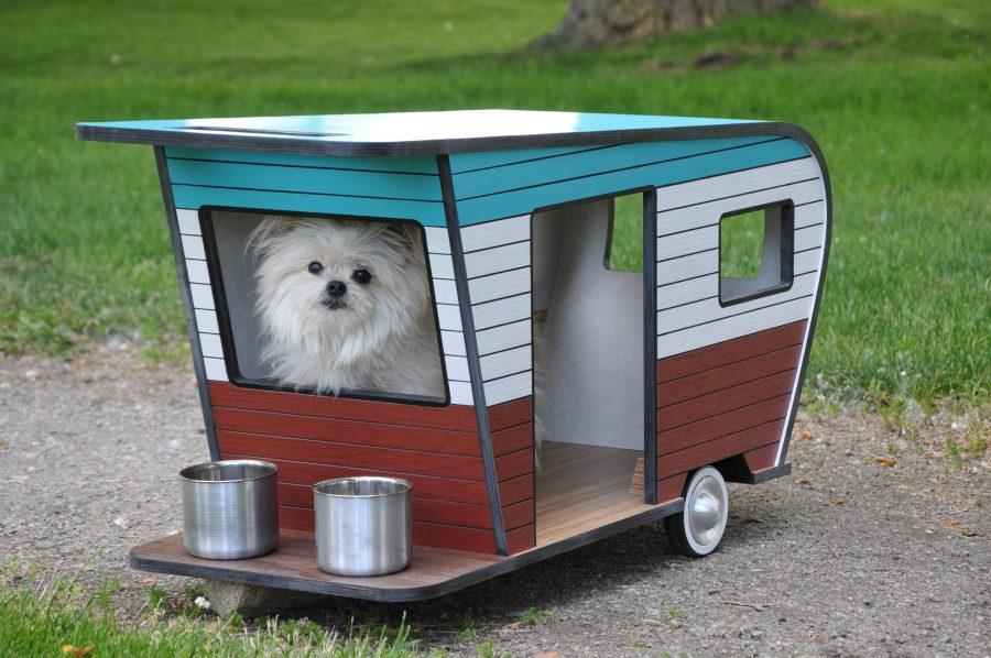 Unique Pet Bed Ideas