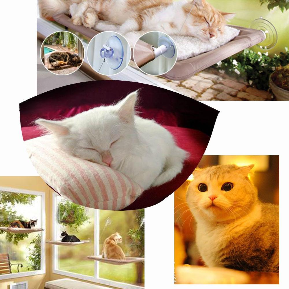 comfortable pet bed ideas
