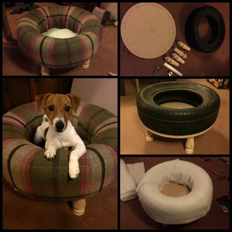 unique dog beds