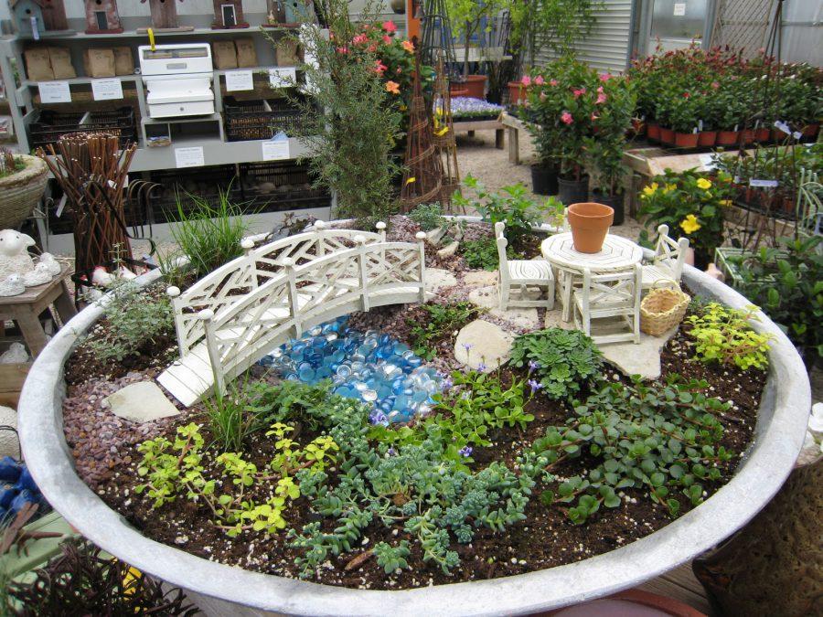 Mini Garden For Summer