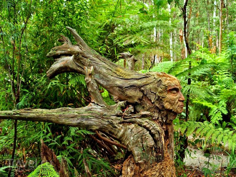 Root-Sculpture