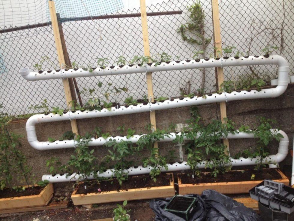 DIY Balcony Gardening Ideas Using Pipes