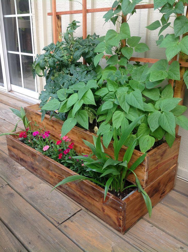 balcony herb garden ideas