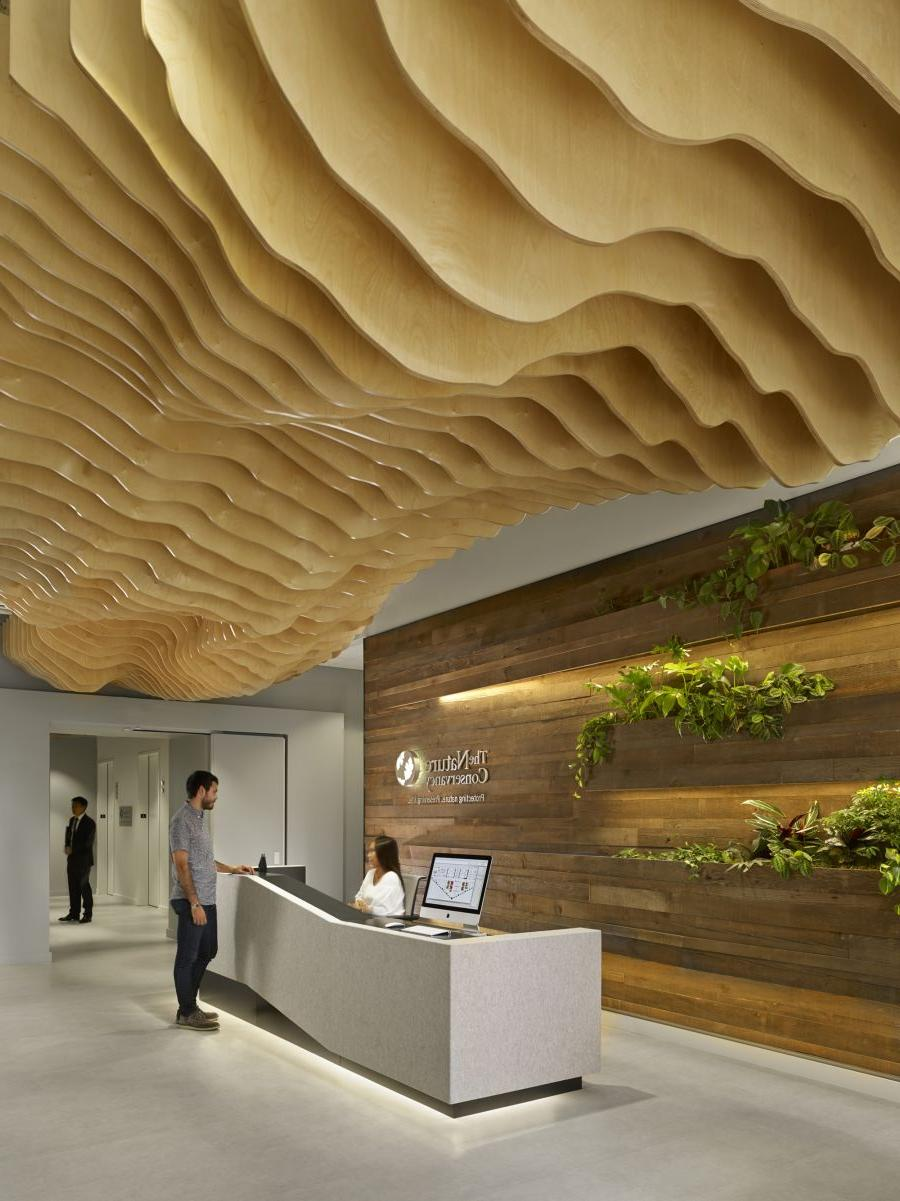 Natural Style Wood Ceiling Ideas