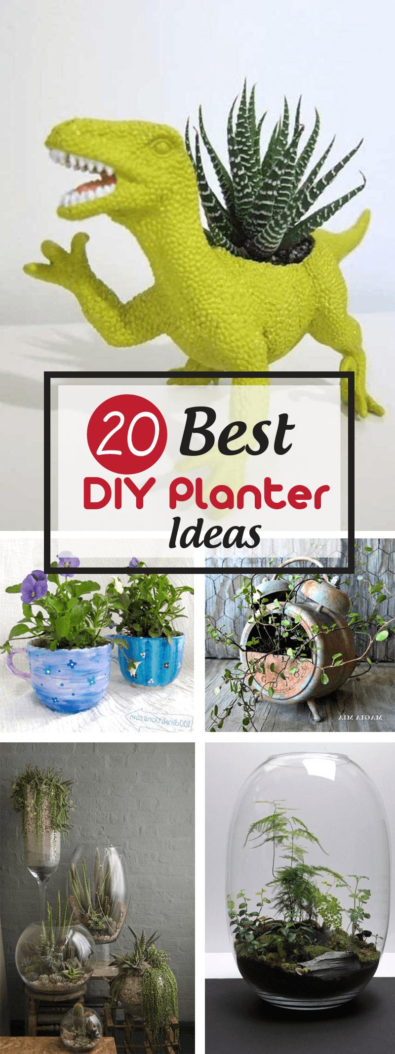 Best DIY Planter Ideas