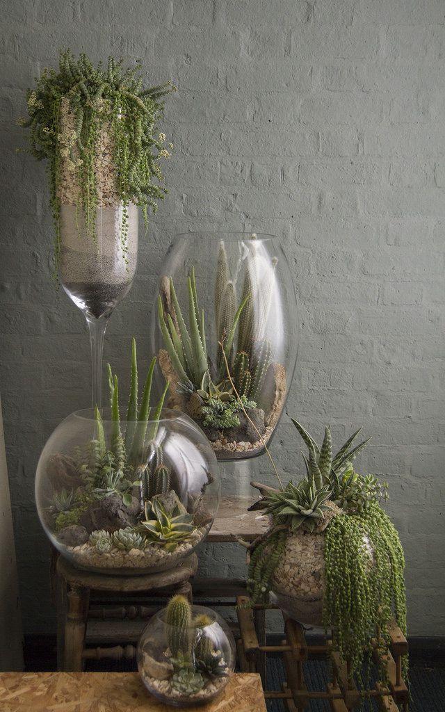 Easy DIY Planter Ideas