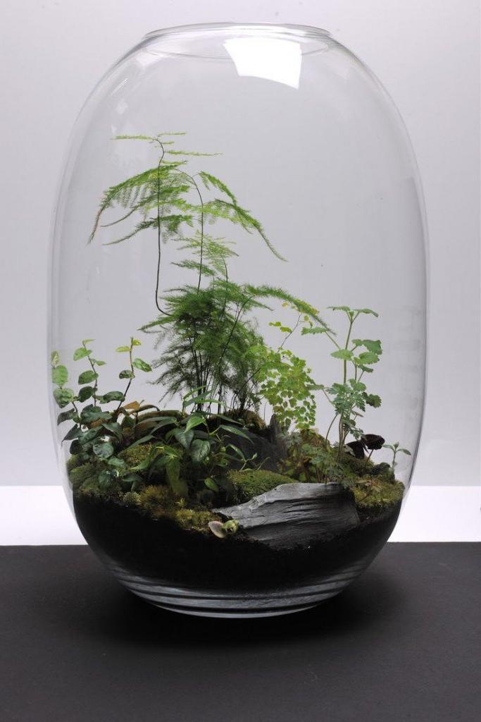 Glass DIY Planter Ideas