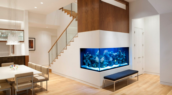Aquarium Under Staircase