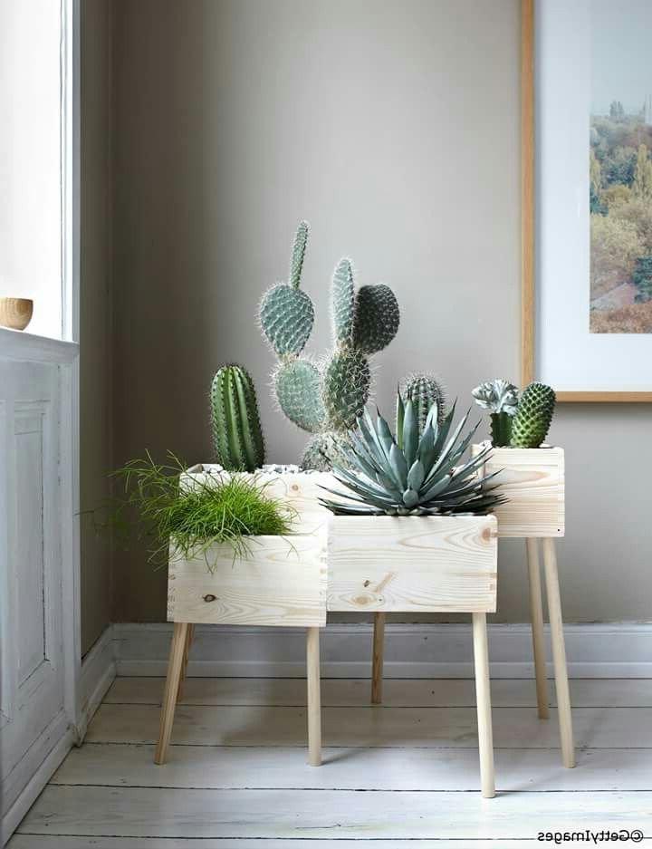Oak DIY wooden Plant Stands