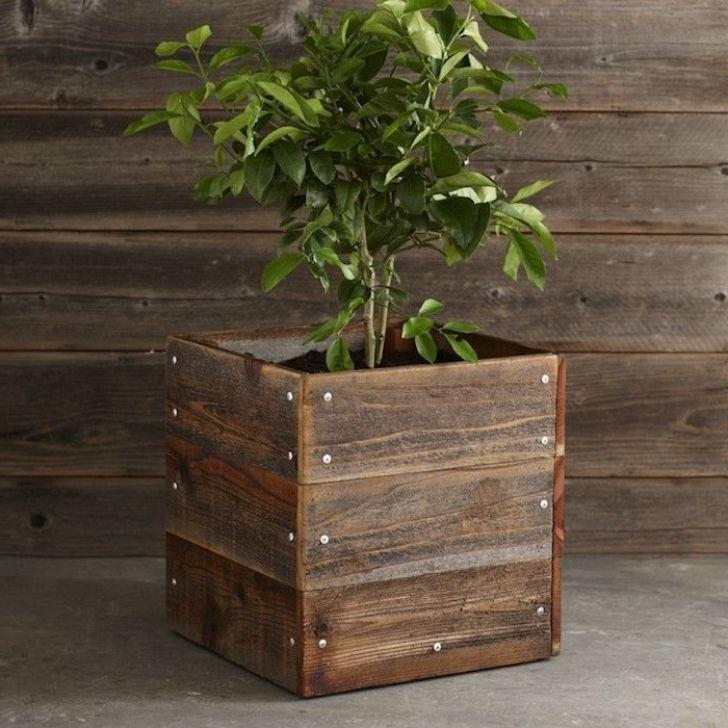 antique wooden plant stands
