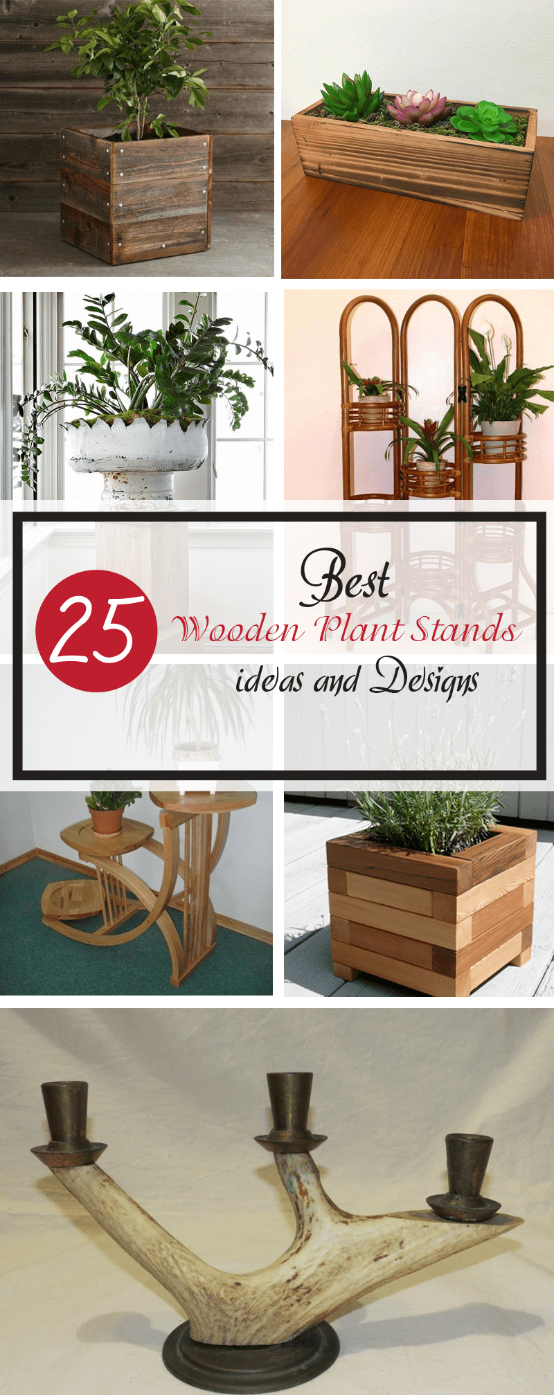 best wooden plant stands ideas and designs