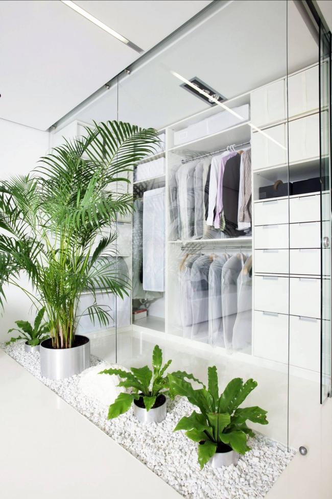 Gorgeous glass walk-in closet