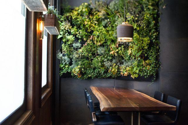Living wall of climbing plants in black and white interior