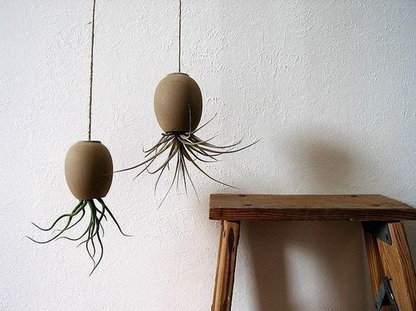 Rough ceramics as a bright component for hanging indoor gardens
