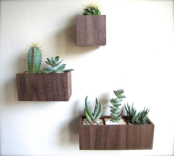 hanging plant basket ideas