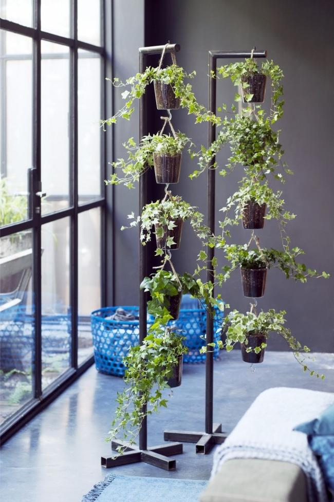 hanging plant holder ideas (Ivy plant decoration)