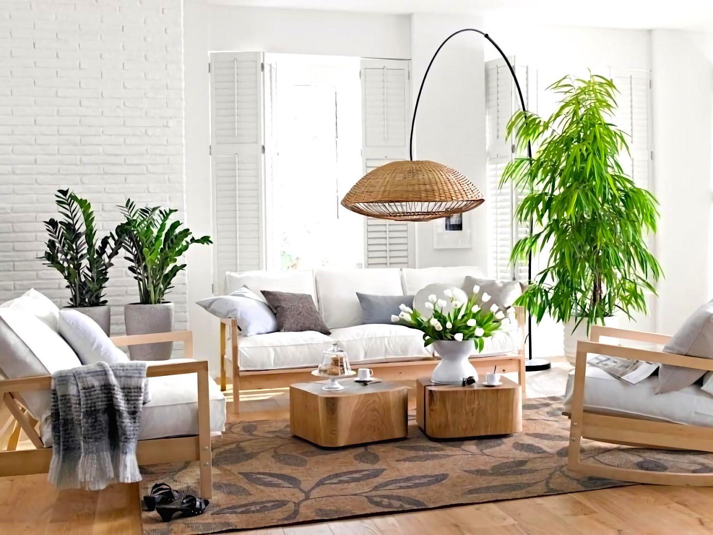 hanging plants decoration ideas