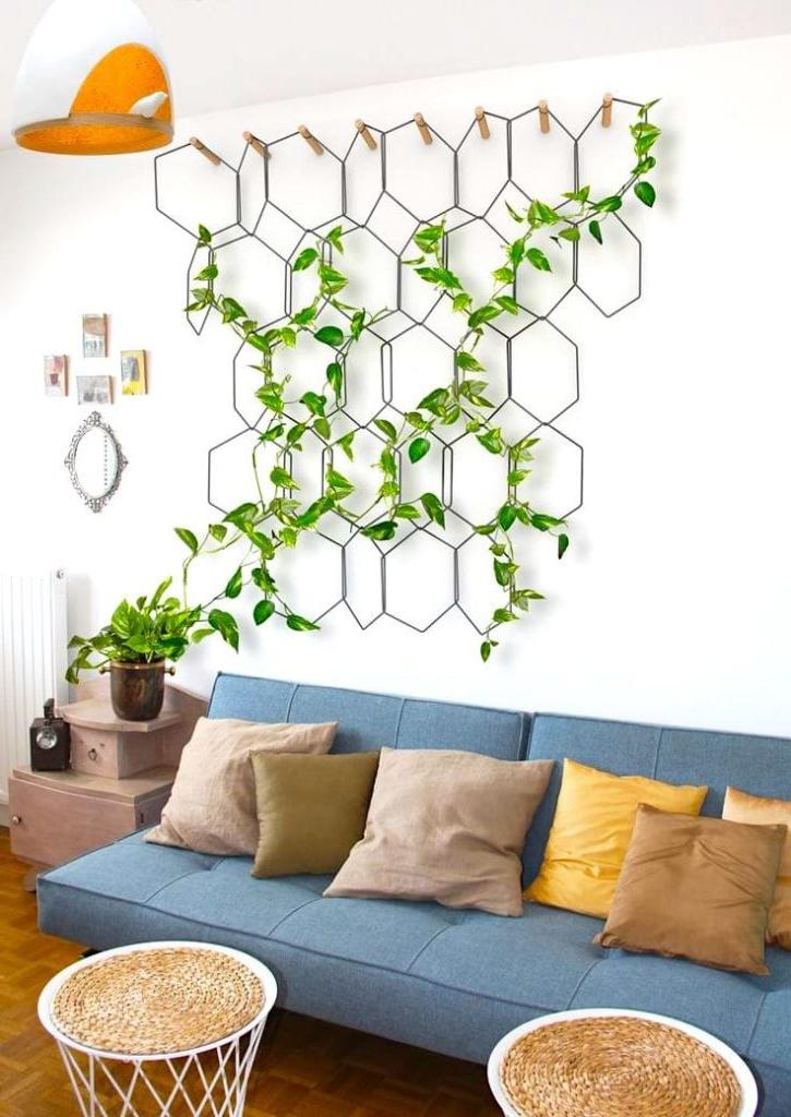 hanging plants in living room ideas