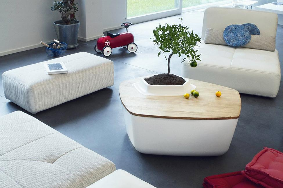 Coffee tables with a pot