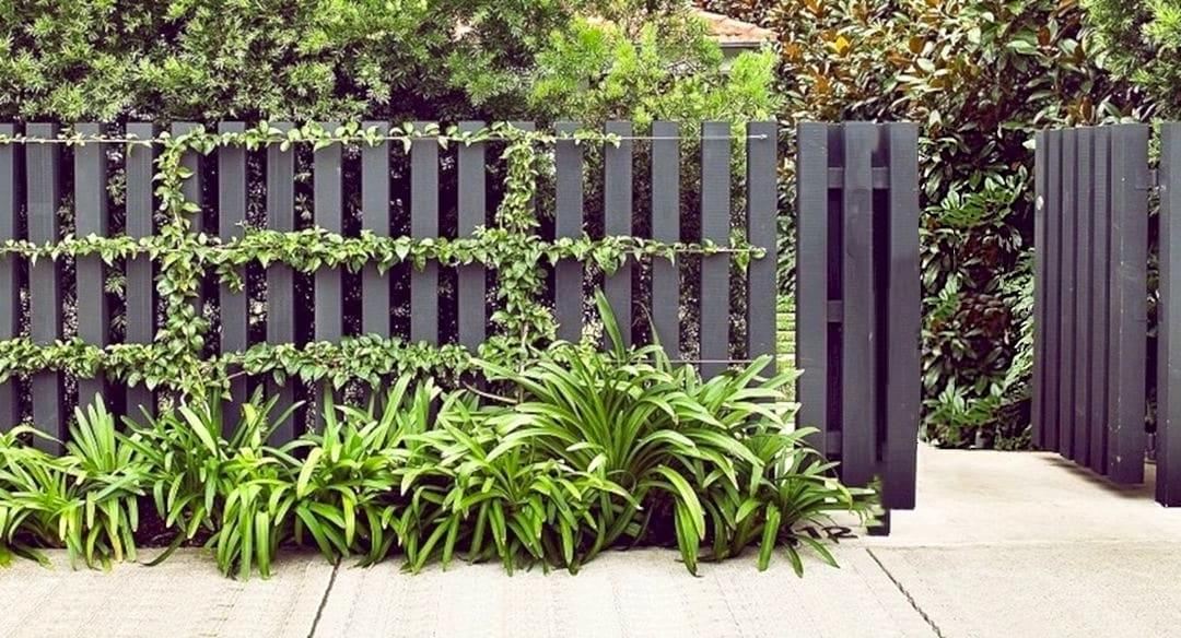 A simple and very beautiful wooden fencing styles