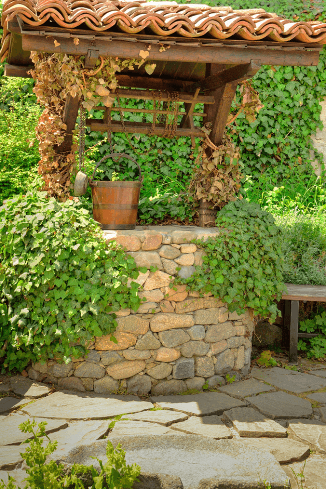 House for a well can be decorated with climbing plants