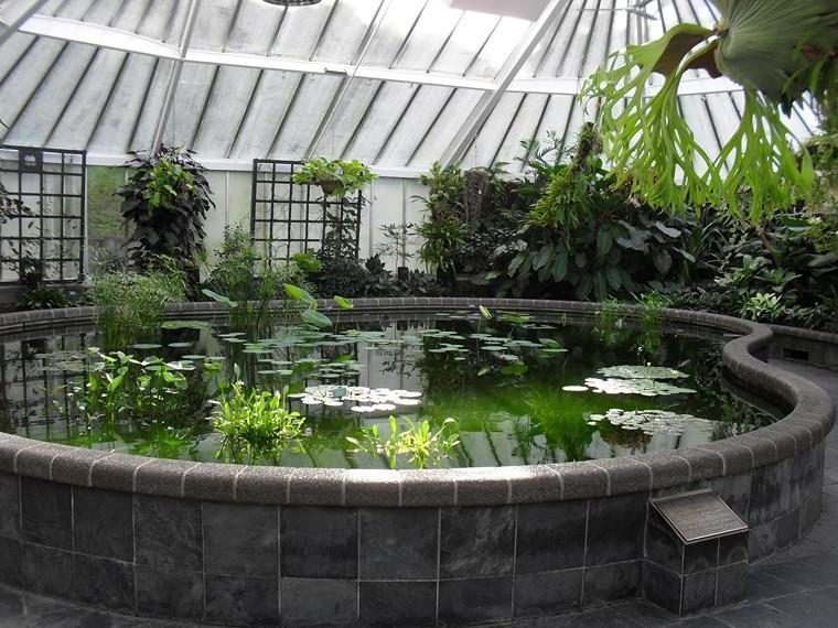 Indoor pond options