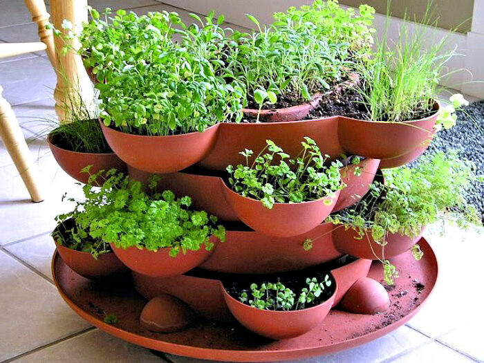 Multilevel herb garden ideas