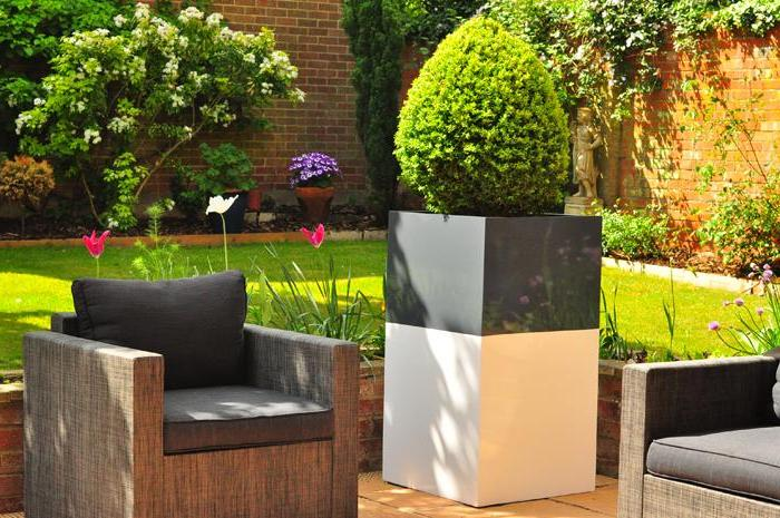 Stylish gray-white flowerpot with a neatly trimmed arborvitae