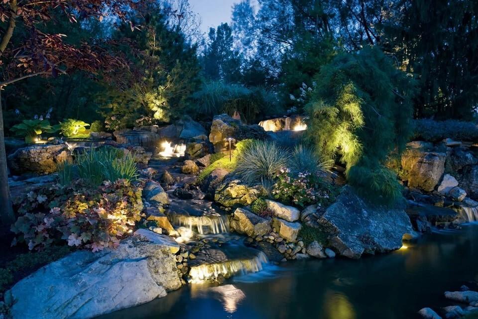 backlit pond