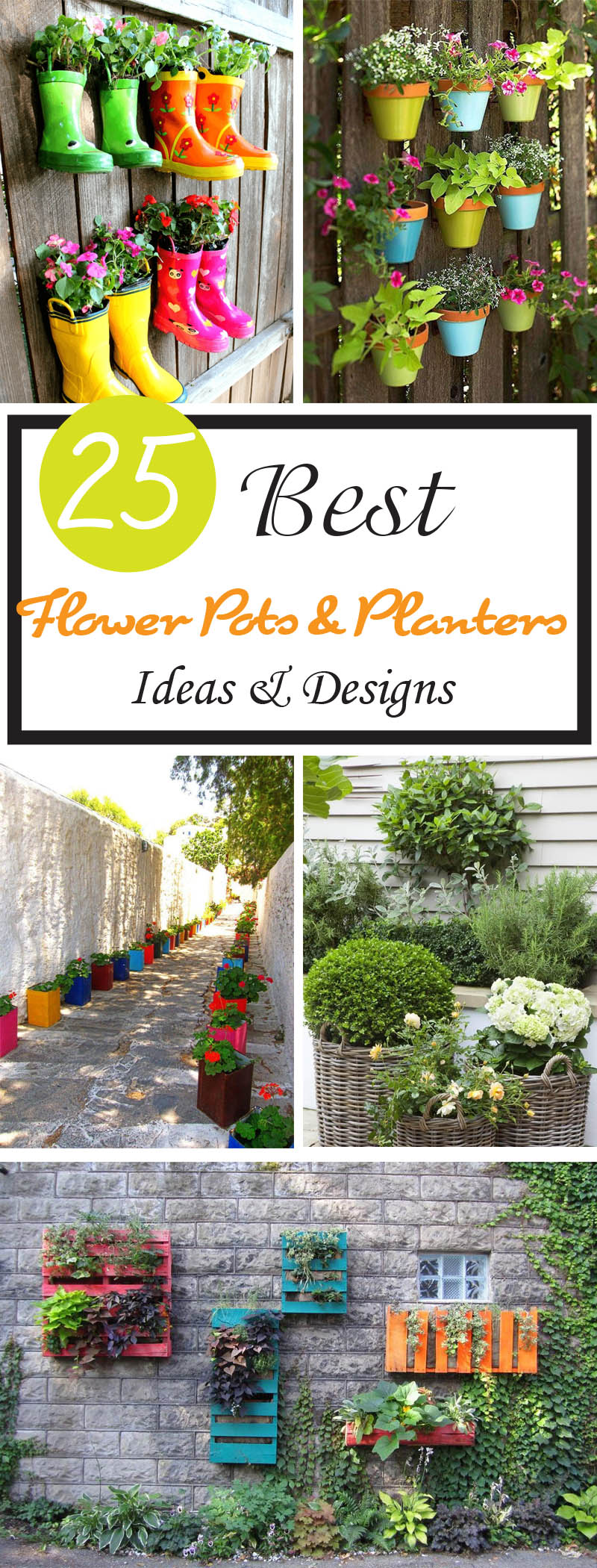 best flower pots and planters ideas