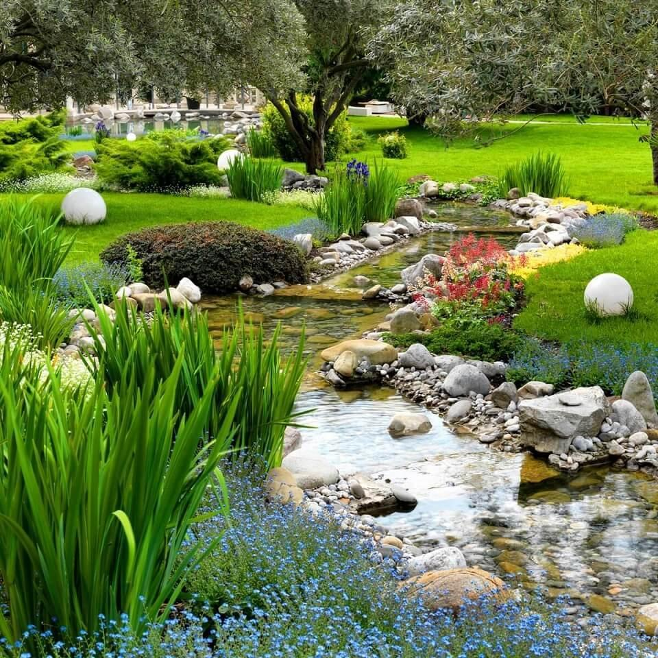 pond in the country-design