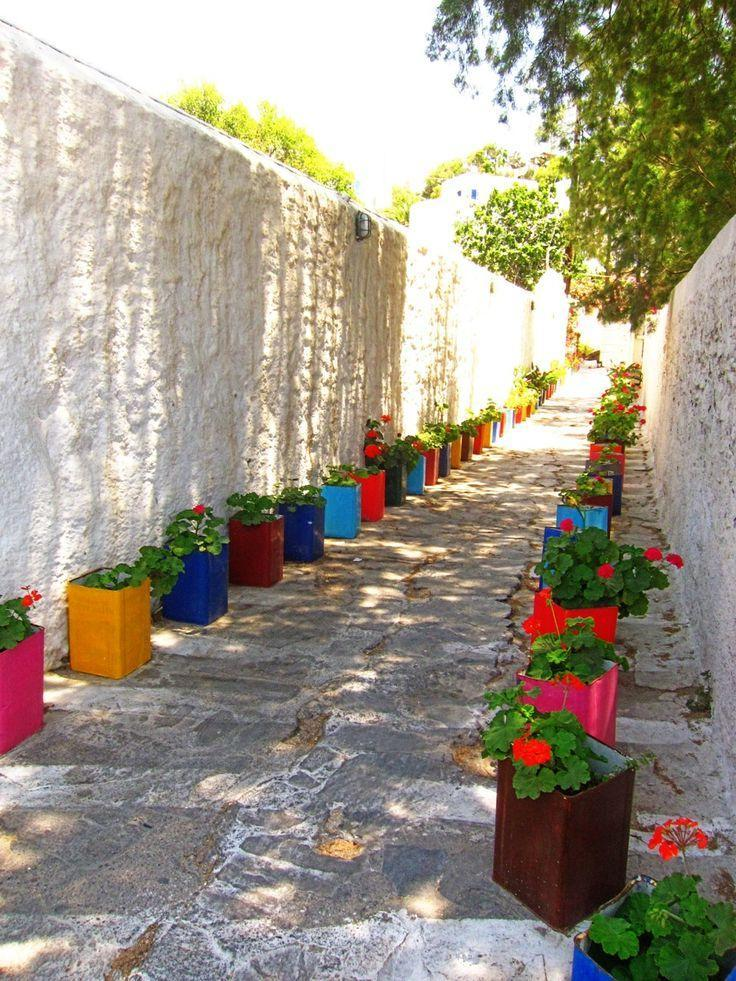 salvation for the alley from boring concrete walls was bright multi-colored boxes with geraniums