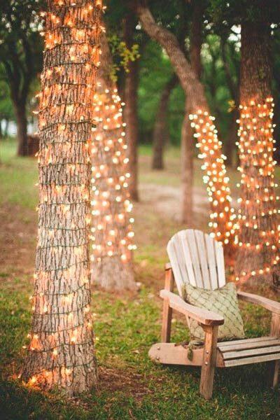 trunks with lightbulb strips